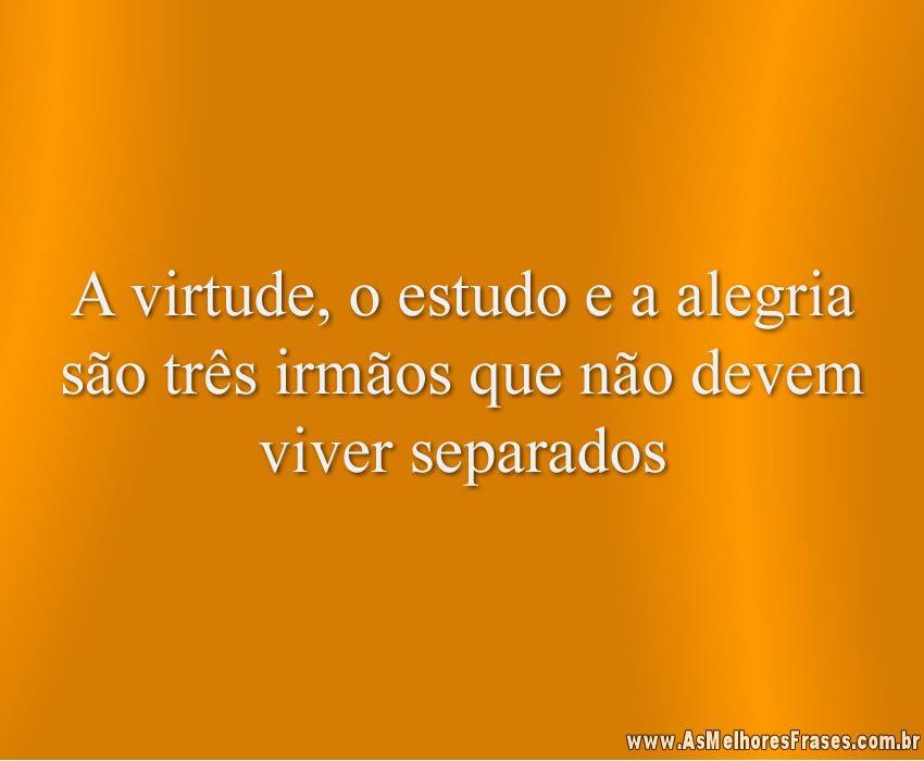 a-virtude-o-estudo