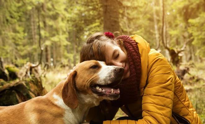 Legendas Para Fotos Com Cachorro As Melhores Frases