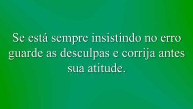 Se está sempre insistindo no erro guarde as desculpas e corrija antes sua atitude.