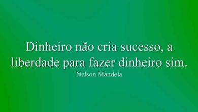 Dinheiro não cria sucesso, a liberdade para fazer dinheiro sim.