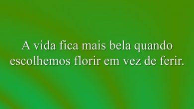A vida fica mais bela quando escolhemos florir em vez de ferir.