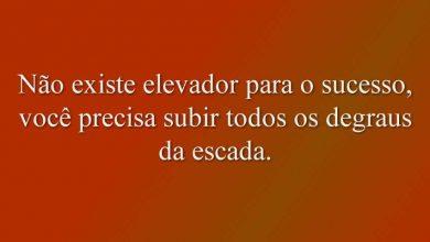 Não existe elevador para o sucesso, você precisa subir todos os degraus da escada.